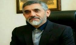 رئیس ستاد مرکزی مبارزه با قاچاق کالا و ارز منصوب شد