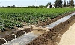 سال آینده 400 میلیون مترمکعب آب پشت سد زایندهرود ذخیره خواهد شد/تمام خسارات ناشی از کمآبی به کشاورزان پرداخت میشود