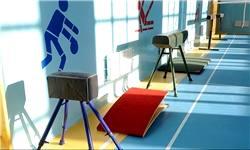 استفاده معلولان از خدمات ورزشی دستگاههای دولتی و شهرداریها رایگان شد