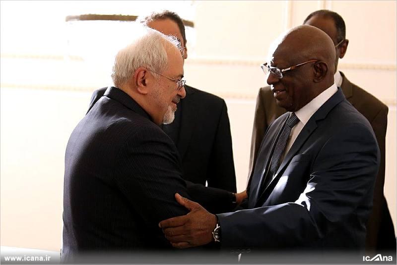 گزارش تصویری/دیدار رئیس مجلس مالی با محمدجواد ظریف