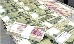 نمایندگان مجلس با «انتشار جزئیات وام مدیران بانک ها» مخالفت کردند