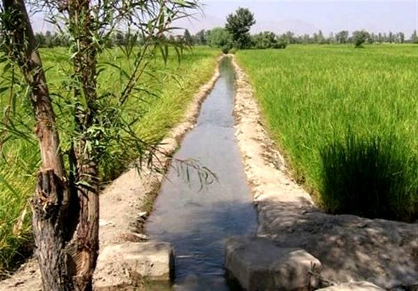 لزوم افزایش آگاهی کشاورزان برای مقابله با بحران کم آبی