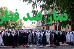 رییس سازمان فرهنگی هنری مسئول کمیته فرهنگی و تبلیغات نماز عید فطر شد