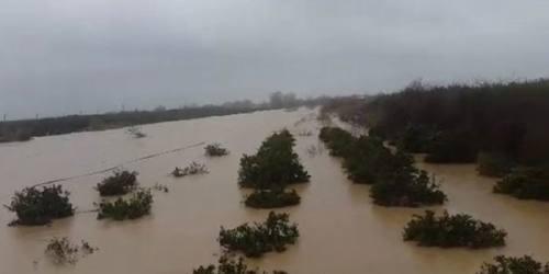 روستای حسنآباد میاندورود زیر آب رفت!