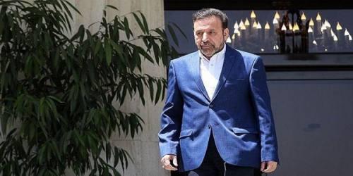 واعظی: از استانی شدن انتخابات حمایت میکنیم