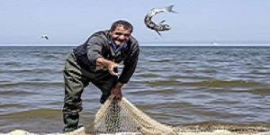 طرح انتقال آب دریای خزر طرح گنگی است/ به خطر افتادن شغل 10 هزار صیاد با انتقال آب خزر