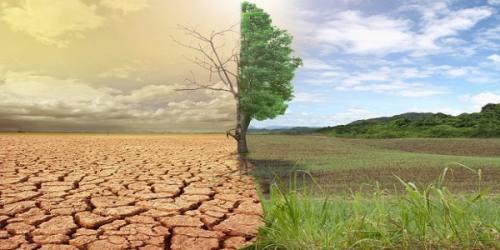 برنامه ششم توسعه مانع از بیابانی شدن جنگلها است/منابع طبیعی قربانی مدیریت نادرست