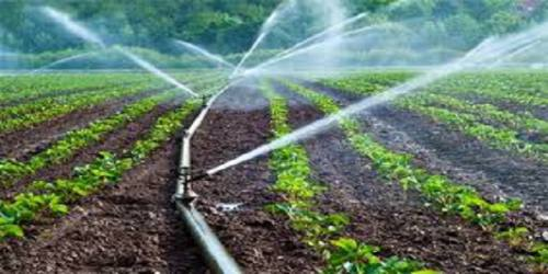 هزینه تولید محصولات کشاورزی ثابت نگهداشته شود