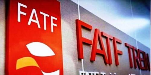 پیوستن به FATF توجه به خواست مردم است/ گزینه دیگری نداریم