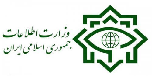 نقش وزارت اطلاعات درپاسداری از کارآمدی نظام