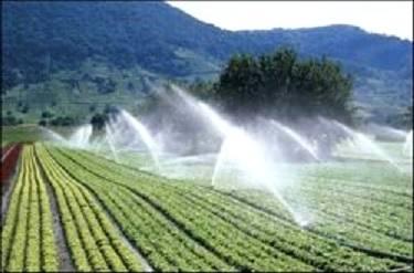 سرمایه گذاری 9 هزار میلیارد تومانی دولت دربخش آب کشاورزی/آب محور دیپلماسی می شود