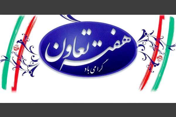 ایرانی ها بهترین مردم برای کار گروهی هستند اگر...