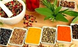 سهم ۷۰ میلیون دلاری ایران از بازار جهانی گیاهان دارویی