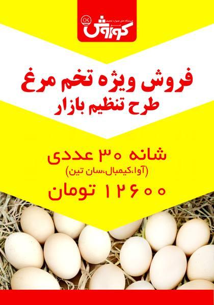 فروش ویژه تخم مرغ طرح تنظیم بازار در افق کوروش