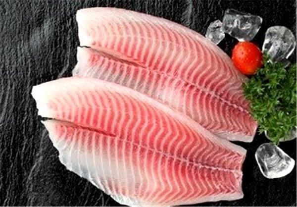 واردات تیلاپیا ممنوع شد/ تولیدکنندگان ماهیهای بومی باید بازار را اشباع کنند