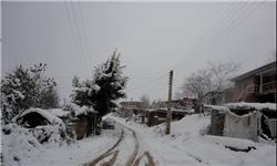 ورود سامانه بارشی به کشور و بارش برف و باران/ وزش باد شدید از بعدازظهر فردا در تهران