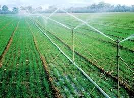 اختصاص 3هزار و 117 میلیارد تومان اعتبار برای طرح توسعه آبیاری نوین