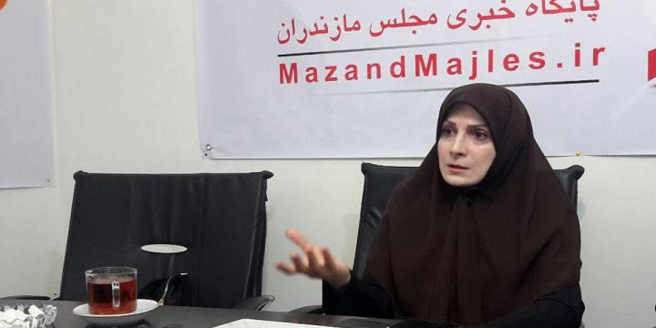احمدی: مجلس عالیترین ظرفیت برای برای تحقق اراده ملت در اداره امور است