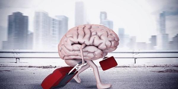 وزارت علوم: ایران رتبه اول فرار مغزها در کشورهای در حال توسعه