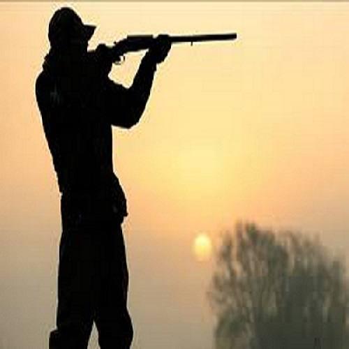شکاربانان شکارچی/ رد پای میلیاردرهای متصل به قدرت، در قتل عام پرندگان مهاجر