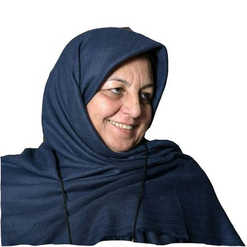 سهم پنجدرصدی در مجلس زیبنده زنان ایرانی نیست