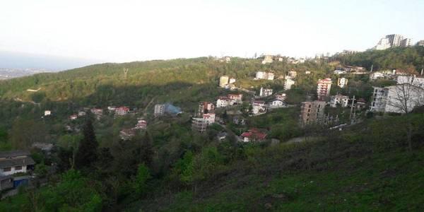 از «افزایش ثبتنام دانشآموزان مهاجر» تا «کاهش شدید آب چشمهها» در مازندران
